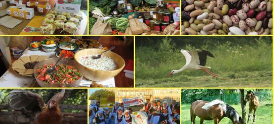 RETRANSMISJA / WARSZAWA: Konferencja Prawdziwe Rolnictwo. Prawdziwa Żywność od Prawdziwych Rolników na tvEkologia.pl ! (NA ŻYWO)