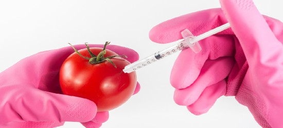 Jak głosowali posłowie w sprawie haniebnej ustawy dopuszczającej rozprzestrzenianie GMO w Polsce